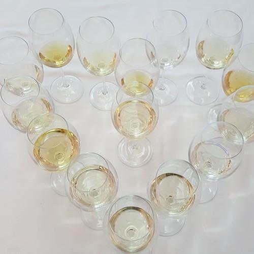 Degustácie vína s Vladimírom Hronským